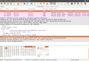 Geneve Frame with VNI 5000 by Wireshark